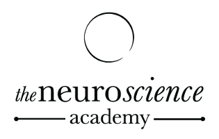 Neuroscience Academy logo