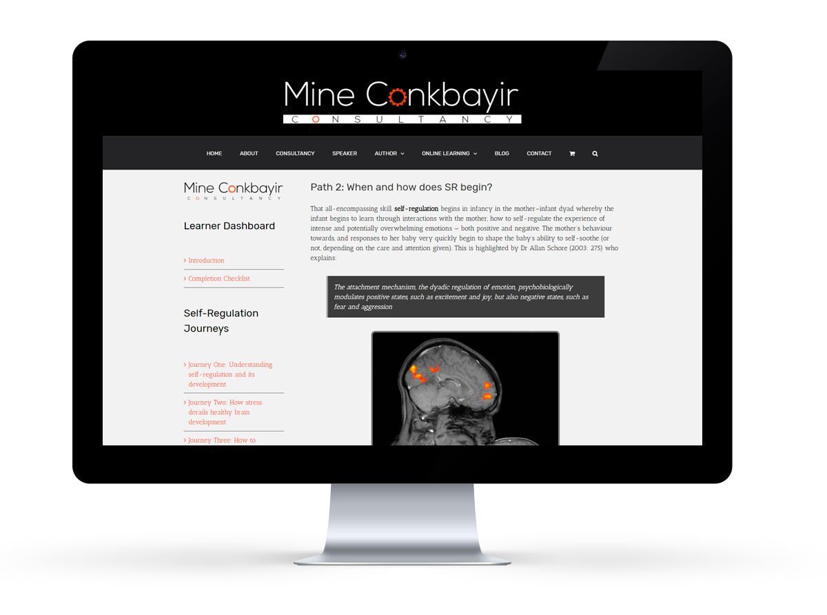 Mine Conkbayir online e-learning programme