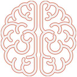 Mine Conkbayir Consultancy brain image